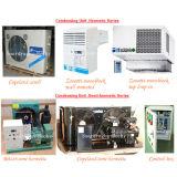 Quarto do congelador do armazenamento frio para o armazenamento do marisco