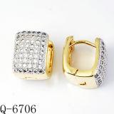 Fabriek de van uitstekende kwaliteit Hotsale van de Oorringen van de Juwelen van het Koper