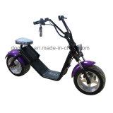 Due grande rotella Scrooser personalizzabile variopinto Citycoco 1000W