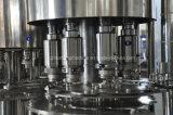 自動びんジュースのびん詰めにする満ち、キャッピングの機械装置(RCGF16-12-6)