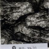 Yingcai ya-902 Langdurige Koele Schedel 1m de Brede Film van de Druk van de Overdracht van het Water