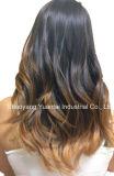 Lujo Clip-en la venta caliente de Extenion del pelo humano
