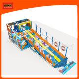ローラーのスライドを持つ子供のためのMichの遊び場の屋内運動場