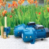 Bomba de agua de la serie del Jet-p del certificado de la ISO para el jardín