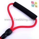 Laisses en nylon d'animal familier de corde d'animal familier durable de couleur de corde de laisse de crabot