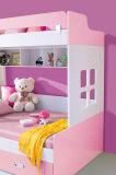 서랍과 내각을%s 가진 사랑스러운 다채로운 나무로 되는 아이 2단 침대
