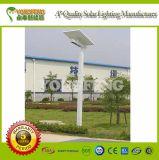 Luz de rua solar da qualidade
