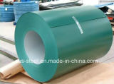Aço galvanizado Prepainted Coil/PPGI/PPGL/PPGI secundário
