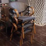 La silla del vector y de la rota del jardín del ocio de la tolerancia fijó para al aire libre (SP-CT838)