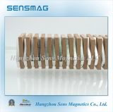Magneet van het Neodymium van de vervaardiging de Onregelmatige Permanente voor Generators en Motoren
