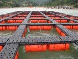 Sistema de la jaula de la acuacultura