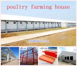 Casa prefabricada en ganado con maquinaria del pollo