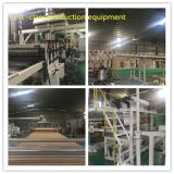 Hoja plástica de la depresión del policarbonato de la Gemelo-Pared de Bayer para el material de construcción