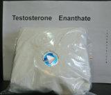 Testoterone steroide Enanthate (muscolo di Enanthate della prova della polvere di purezza di 99% di reshape)