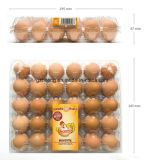 PVC Egg Container Packing Box (Plastiktellersegment)