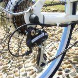 bicicleta elétrica Rseb-1215 da praia 26inch fêmea