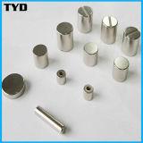 De Cilinder Gesinterde Magneet van uitstekende kwaliteit van het Neodymium