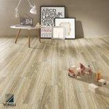 Mattonelle di legno della pavimentazione e della parete di nuovo disegno