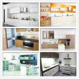 La cabina de cocina barata modular de N&L Polonia para crea para requisitos particulares