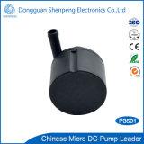 Schwanzlose 12V 24V Gleichstrom-medizinische Behandlung-Pumpe mit Kopf 2.5m