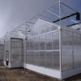 Heißes Multi-Überspannung 2016 PC Gewächshaus für Seeding