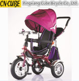 Baby Toddler Tricycle mit Push Bar