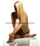 Perruque normale de lacet de perruque d'avant de lacet de cheveux humains de la Chine