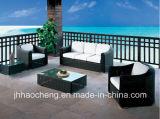 Mobilia del rattan del giardino, mobilia esterna