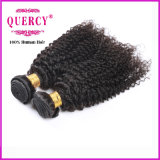 8A 100%の加工されていないバージンのRemyのねじれたカールのブラジルの人間の毛髪