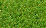 Synthetisch/Kunstmatig Gras met Mej.