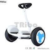 新製品の自己のバランスをとるスクーターの電気スクーターのバランスのスクーター