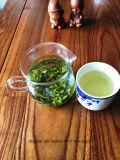 O melhor chá verde de venda com euro- padrão