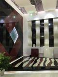 Mattonelle nere di pietra di vetro Nano per il parchè del pavimento