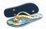 Тапочка Flop Flip 2016 ботинок женщин лета (RF16253)