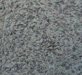 G619トラの皮の白い花こう岩の平板