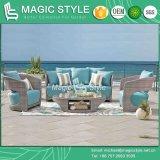 Sofà stabilito del patio del sofà di vimini stabilito del sofà di alta qualità (stile magico)