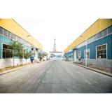 الصين صاحب مصنع بيع بالجملة رافعة شوكيّة [بنيومتيك تر]