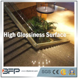 De Chinese Populaire Steen van het Graniet voor Treden/Stappen/Step&Riser/Treads