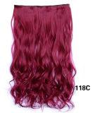 Cinque schede calde ed estensione lunga dei capelli ricci dei capelli