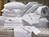 Neues Ankunfts-durchdachtes waschbares Hotelduvet-Kissen-inneres Set