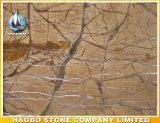 De in het groot Directe Fabriek van de Plak van het Regenwoud Marmeren