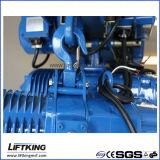 Gru Chain elettrica di velocità doppia di Liftking 3t con la sospensione dell'amo (ECH 03-01D)