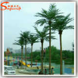 景色の大きい屋外の人工的なココヤシの木の木