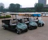 Общего назначения тележка гольфа для сбывания Dfev