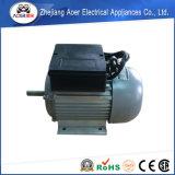 AC 단일 위상 비동시성 높은 토크 낮은 Rpm 감속장치 모터