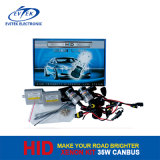 Kein Flickering Canbus HID Xenon Kit für High Class Cars 35W WS
