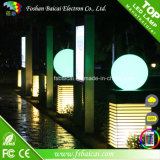 Frost Surface Waterproof LED Ball für Garten, Pool