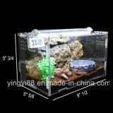Cage acrylique de bonne qualité de Terrarium de reptile à vendre