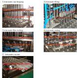 Remplissage de cuvette de yaourt et machine automatiques de cachetage (BG60A)