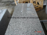 Natural White Graniteの中国のGrey Granite